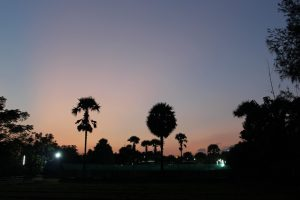 Sunset at Vaidyagrama